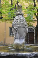 Fontana della Morte, Viterbo