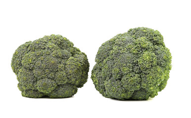 Broccoli vegetable isolated on white