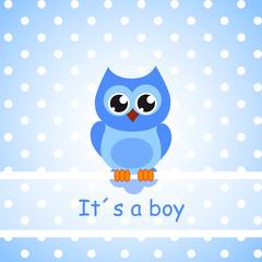 its a boy eule