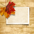 Wooden background  with autumn leaves and old card