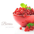 Organic red currant in a bowl
