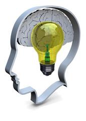 IDEA - 3D