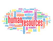 """HUMAN RESOURCES"" Tag Cloud (performance management process)"