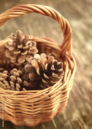 Pine cones in basket