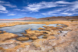salt lake Salar de Tara, Chile poster