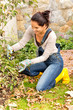 Happy woman gardening bush fall backyard kneeling