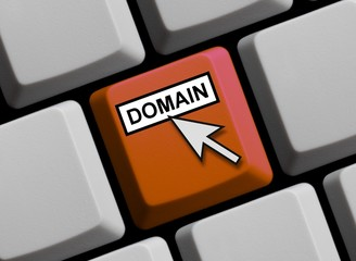 Online Domain