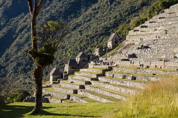 Inkaterrassen, Machu Picchu,  Peru