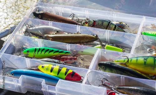 Set of fishing lures