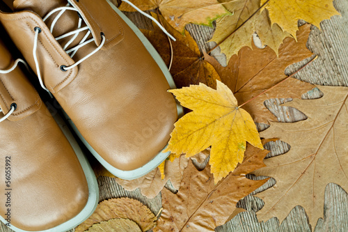 pair of biege leather shoes and yellow leaves