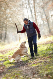 Man Throwing Stick For Dog On Walk Through Autumn Woods