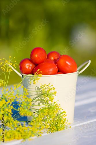 Маленькие красные помидоры и укроп на деревянном столе