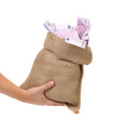 Hand holding bag with many banknotes