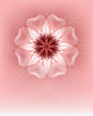 unusually delicate flower