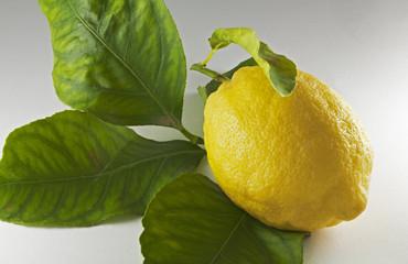 Limone con Foglie
