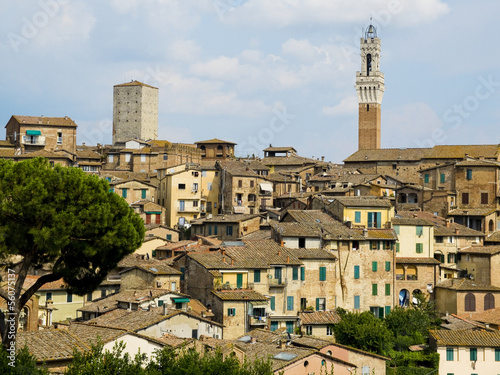 Antique houses and Mangia tower. Siena, Italy