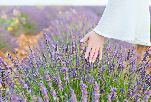 Hand and lavender