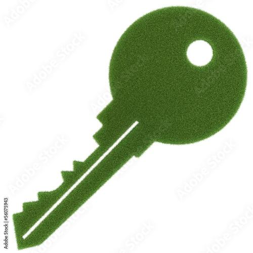 Der grüne Schlüssel