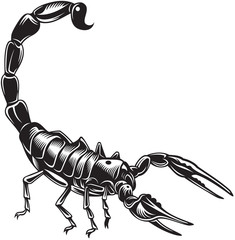 Scorpion, black and white style