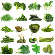 verdura verde collage