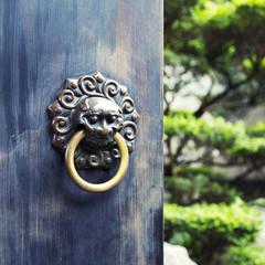 Antica porta in legno con maniglia in bronzo