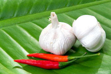 Garlic and Spicy red hot pepper on green leaf
