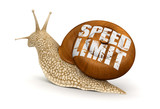 Speed Limit Snail (clipping path included)