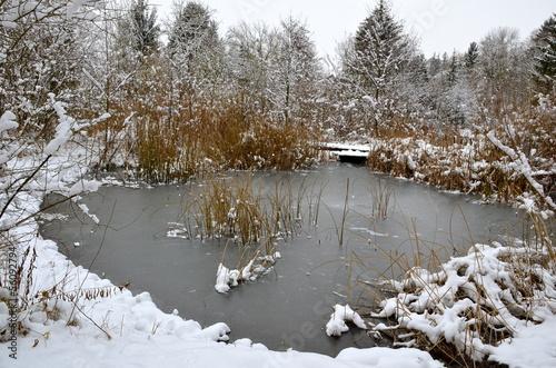 Winter in Riehen, Switzerland