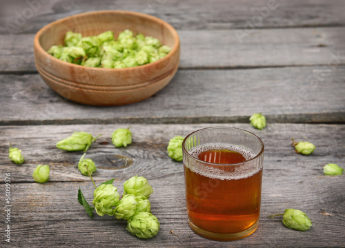 Harvest of hops and a glass with a drink from the hops