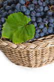 basket with blue grapes