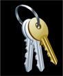 Keys, gold key.  Vector set.