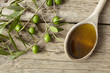 olive branch and a spoon full of oil