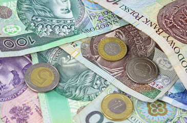 Polish zloty (PLN) currency - banknotes and coins