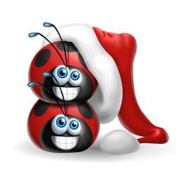 coccinelle natalizie