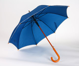 Dark blue umbrella