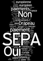 Espace unique de paiement en euros  - SEPA