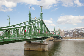 Bridge of Liberty over Danube, Budapest