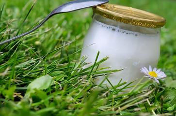 yaourt dans un pot en verre,fabrication artisanale