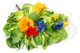 fresh green salad with edible garden flowers on white
