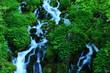 ブナ坂の清水