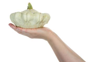 Hand holding pattypan squash