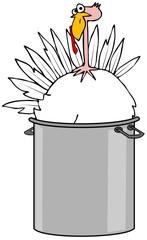 Boiled turkey