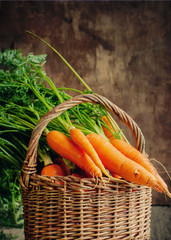 Fresh Organic Carrots in a basket on wooden background