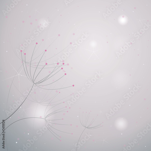 Flowers Anise / Gently floral background