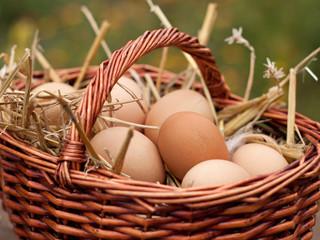 frische eier vom wochenmarkt