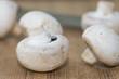 Fresh Agaricus bisporus mushrooms