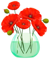 Red poppies flowers in glass vase
