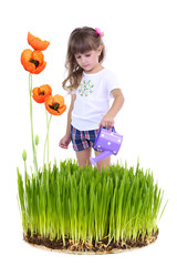 Little girl watering beautiful poppies and grass isolated