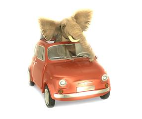 Elefante dentro Pequeño coche Italiano
