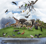 A Collage Of Wild Animals And Birds Kanvas Tablo